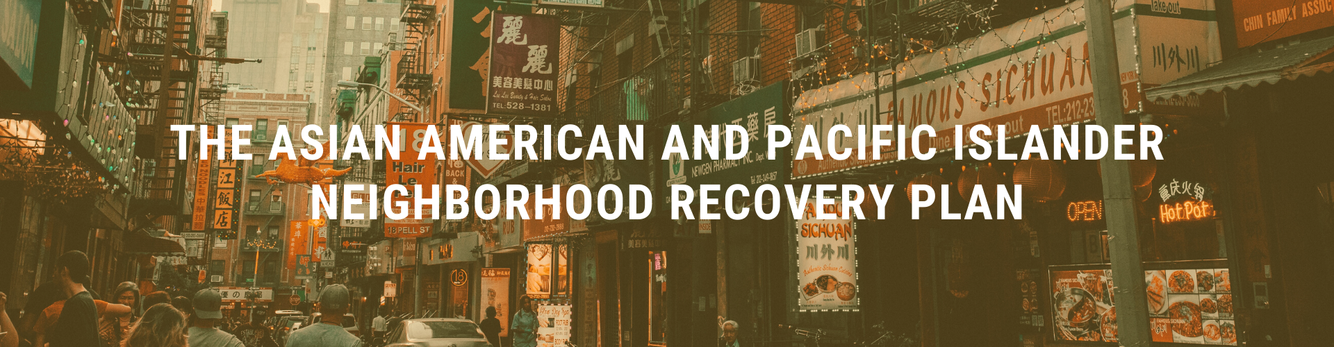 AAPI Recovery Plan Website Header
